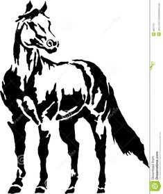 horse in black and white.