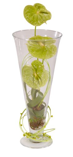 Anthuriums in glass, I would have chosen a cooler glass ;-)