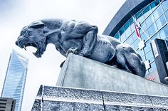 Carolina Panthers Bank of America Stadium in Charlotte, NC. Celebrate his birthday in North Carolina.  Think about what would make your guy happy on his big day.  Then discover what we have right here in North Carolina.Celebrate his birthday in North Carolina.  Think about what would make your guy happy on his big day.  Then discover what we have right here in North Carolina.