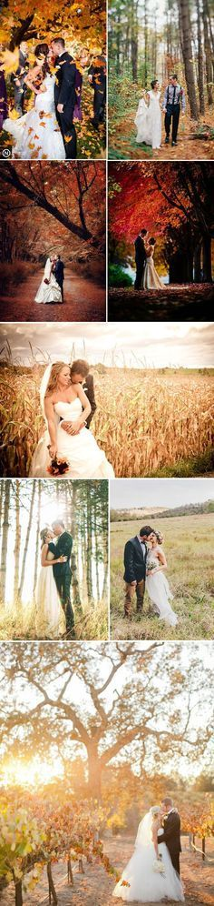 Gorgeous autumn season wedding photo ideas. #Wedding #Photography