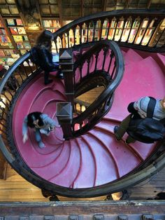 A tale in three cities: literary delights in #Porto, #Coimbra and #Lisbon - via Mum's Gone To 20-02-2017 |  #Portugal #travel #culture Photo: Livraria Lello stairs