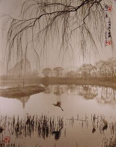 Chinese painting-like photos
