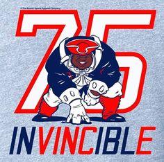 Vince Wilfork   New England Patriots