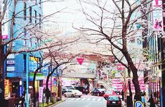 Find images and videos about pink, city and spring on We Heart It - the app to get lost in what you love. City Life, South Korea, Seoul, Find Image, We Heart It, Times Square, To Go, Asia, Fair Grounds