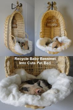 Recycle baby bassinet into an absolutely adorable and unique pet bed!!!  Works well for both cats and small dogs! ;)