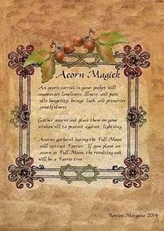 Autumn Equinox: Acorn Magick, for the Autumn Equinox. - Pinned by The Mystic's…
