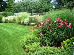 **Show DB. Layer grasses and Knock Out roses along the fence for privacy and to amp up curb appeal.