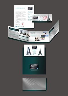 American Express Cathay Pacific Solo DM 2010 Design by Awai