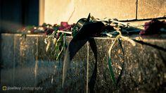 365 - D246  Death at a Funeral / Un funeral de muerte