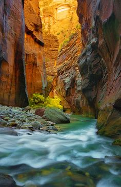 River Narrows Trail, Zion National Park