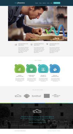 Flonomics-website-homepage