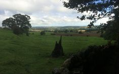 Masham viewed from Swinton Estare Mountains, Nature, Plants, Travel, Naturaleza, Viajes, Destinations, Plant, Traveling