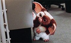 Gremlin II Les Gremlins, Gremlins Gizmo, Horror Icons, Horror Films, Science Fiction, Funny Scenes, 80s Movies, Weird Creatures, Movies