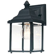 Oren 1-Light Outdoor Wall Lantern
