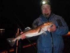 Nice cod frome shore in Norway! check out fore more http://storlaksen.com/index.php/no/blog/7-torsk-torsk-torsk-og-atter-torsk