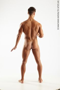 Male pose 15 by ArtistReferences Human Reference, Anatomy Reference, Photo Reference, Figure Reference, Male Body Art, Human Anatomy For Artists, Anatomy Poses, People Figures, Body Anatomy