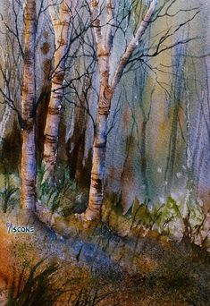 Birch Shadows. watercolor by Teresa Ascone