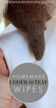 Homemade Udder & Teat Wipes