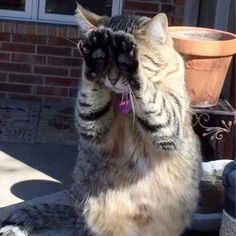 """""""You can't see me!"""" 