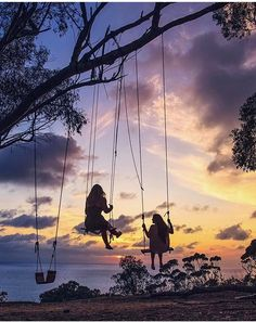 Secret swings in La Jolla, California