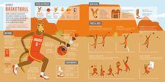 Basketball (serie de infografías) :: JOEGA   Juegos Olímpicos Estudiantiles on Behance