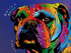 Bulldog- i am always looking for cool bulldog pictures!
