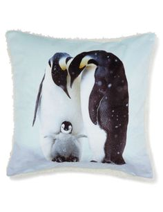 Special offers, deals, discounts and free gifts Free Gifts, Penguins, Christmas Decorations, Cushions, Throw Pillows, Ireland, Decor Ideas, Art, Art Background