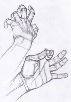 Drawing Hands - Study by Stefano Lanza on DeviantArt Drawing Lessons, Drawing Skills, Drawing Techniques, Figure Drawing, Art Lessons, Drawing Tips, Anatomy Sketches, Anatomy Art, Anatomy Drawing