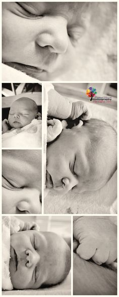 Newborn timeline 1 day young <3