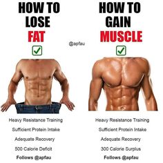 LOSE FAT GAIN MUSCLE A common misconception is that your diet and routine must is part of fitness fitness - Fitness Gym, Muscle Fitness, Mens Fitness, Fitness Tips, Fitness Motivation, Health Fitness, Bodybuilding Motivation Quotes, Men Health, Muscle Food