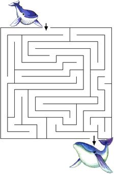 http://www.jeu-labyrinthe.com/displayimage.php?pid=84