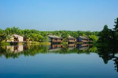 The result of a 15-year journey of rejuvenation, which transformed an abandoned barren mining land into a tropical oasis of palm plantation, organic gardens, rehabilitated lakes and undisturbed wetlands. From the private villas built on stilts over the lake, to those beside lily-dotted wetlands, every inch of this eco award-winning luxury resort built with eco-conscious materials brings guests closer to nature. Modern Asian, Closer To Nature, At The Hotel, Hotel Deals, Resort Spa, Organic Gardening, Mansions, Travel, Outdoor