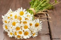 Wild Flowers, Daisy Flowers, Yellow Bouquets, Photo Illustration, Mother Day Gifts, Royalty Free Images, A Table, Presents, Stock Photos