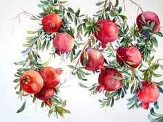 Pomegranate, art by Suren Nersisyan Watercolor Fruit, Fruit Painting, Watercolour Painting, Watercolor Flowers, Pomegranate Drawing, Pomegranate Art, Pomegranate Tattoo, Grenade, Fruit Art