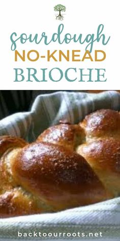 Brioche is a rich, buttery bread that's perfect for special occasions. Give this no-knead sourdough version a try the next time you have something to celebrate! Knead Bread Recipe, No Knead Bread, Sourdough Recipes, Sourdough Bread, Sourdough Brioche Recipe, Bread Machine Recipes, Bread Recipes, Starter Recipes, Flour Recipes