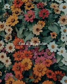 Dios es la solución