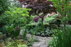 shade gardens | ... have grown, we've amended the plantings to tolerate more shade