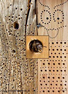 Insektennisthilfe Insektenhotel Nisthilfe Hartholz Bohrungen