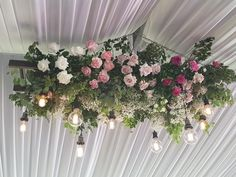 Wow, this hanging rose installation was created by Blush and Bloom Studio, Vasse Pilates Workout, Gym Workouts, Sports Leggings, Activewear, Wedding Venues, Floral Wreath, Blush, Studio, Rose