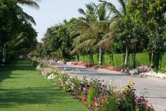 Al Nahda Resort - SPA Пътешествие в Оман | Белла Донна