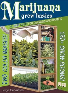 Marijuana Grow Basics: The Easy Guide for Cannabis Aficionados: Jorge Cervantes: 9781878823373: Amazon.com: Books