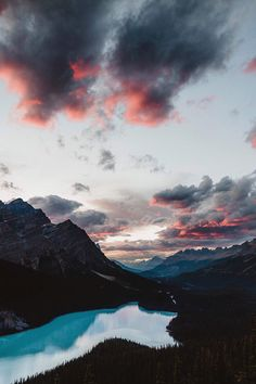 United By Blue - banshy:   Peyto Lake // Wayne