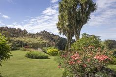 Puketarata Garden lies inside an outer rampart of the historic Puketarata pā site, one of a number in the valley region. Around the 15th or 16th centuries, the age of pā building began, and for four or five hundred years Puketarata was home to Māori who lived and gardened at the pā site or its adjacent kainga (village) Keteonetea. Historic events had a destructive effect on Taranaki and on Puketarata/Keteonetea. In the 1820s the musket wars began followed by the subsequent arrival of Pākehā… Five Hundred, 16th Century, Destruction, Golf Courses, The Past, Age, Number, Events, Building