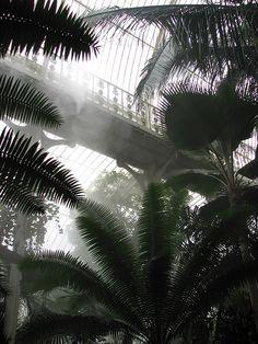 Kew Gardens   »Schon um das Jahr 1775 waren die Gärten von Kew eine botanische Arche Noah mit einer Tausende von Exemplaren umfassenden Sammlung, die durch wöchentliche Lieferungen ständig erweitert wurde – Hortensien aus dem Fernen Osten, Magnolien aus China, Farne von den Westindischen Inseln.« DAS WESEN DER DINGE UND DER LIEBE, S. 19