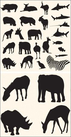 Free Vector Pack – Safari and Zoo Animals