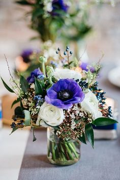 Die 302 Besten Bilder Von Blaue Blumen Blue Flowers Planting