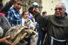 Pets are blessed during a mass event outside the San Francisco church in Lima, Peru.