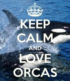 Keep calm and love orcas... how easy to do that on Galiano Island.