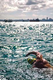 travessia mar grande salvador 2013 - Pesquisa Google