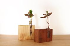 Bud vase Test tube vase Small vase Upcycled от SuitCaseWorkshop